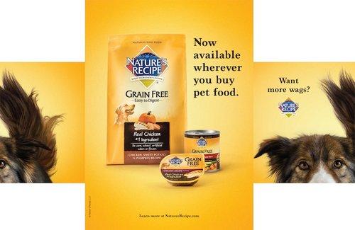 natures-recipe-print-dog-photographer-for-dog-food.jpg