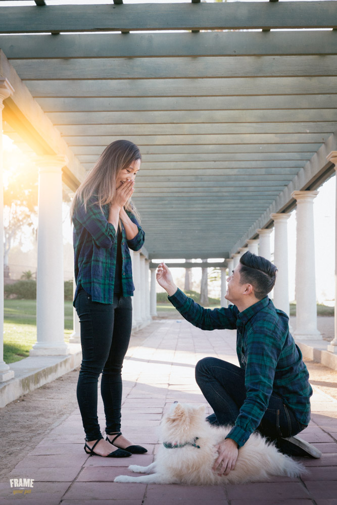proposa-engagement-romantic-photos.jpg