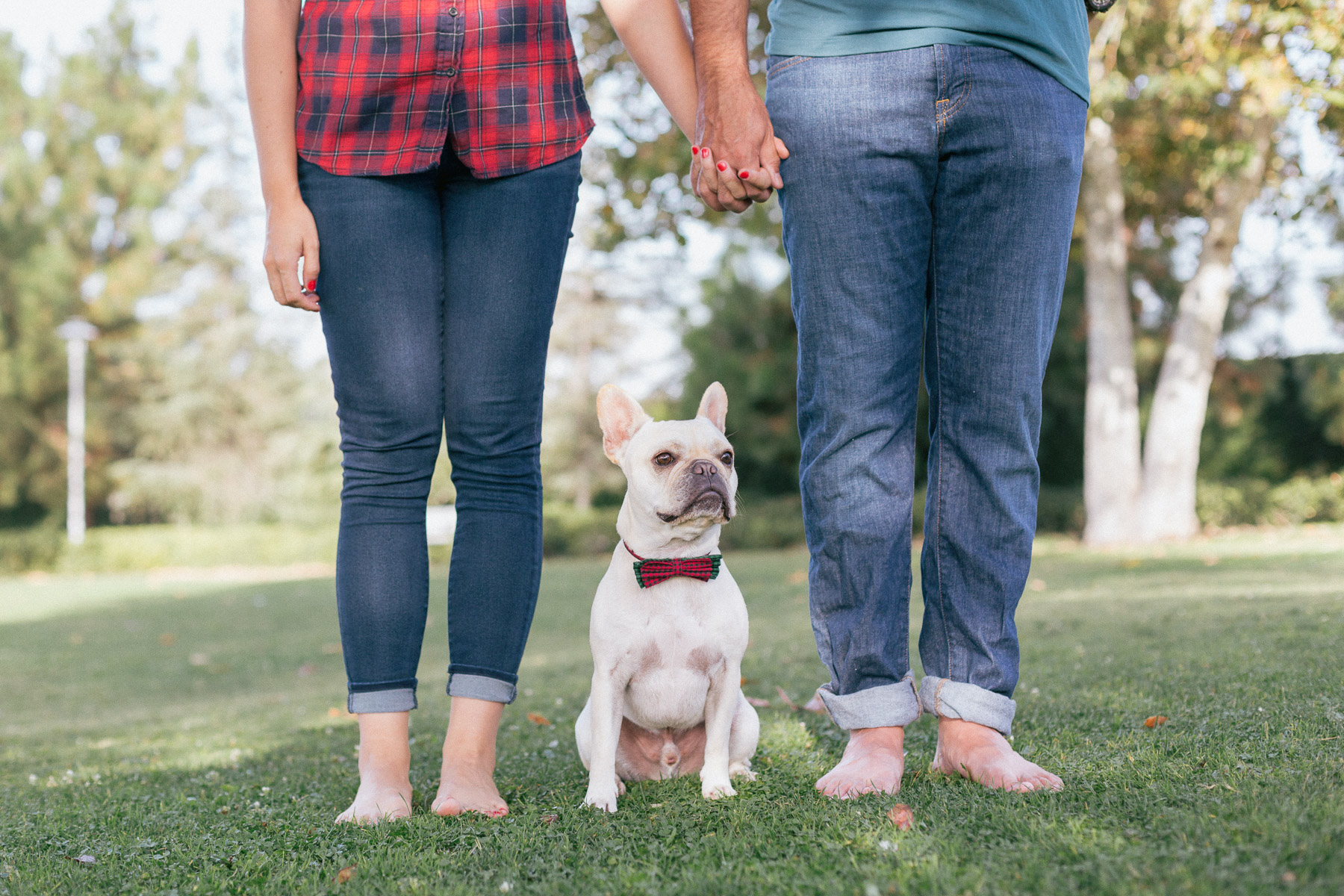 engagement-session-with-dog-photo.jpg