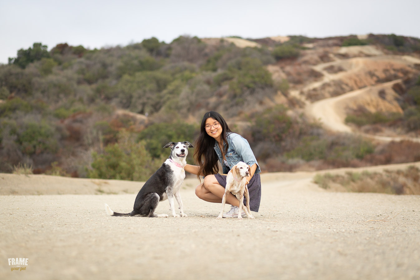 ARP_0222-dog-photographer-los-angeles-pet-photography-santa-monica-animal-photos.jpg