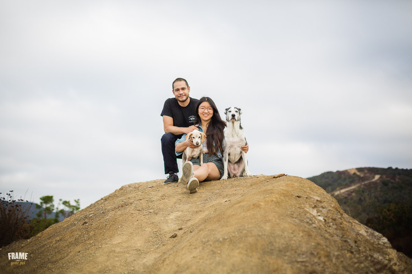 ARP_0720-dog-photographer-los-angeles-pet-photography-santa-monica-animal-photos.jpg