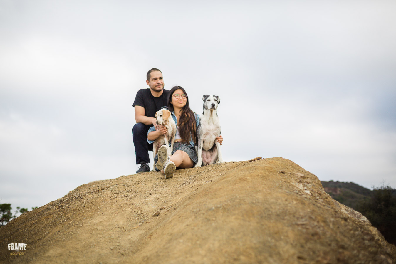 ARP_0722-dog-photographer-los-angeles-pet-photography-santa-monica-animal-photos.jpg