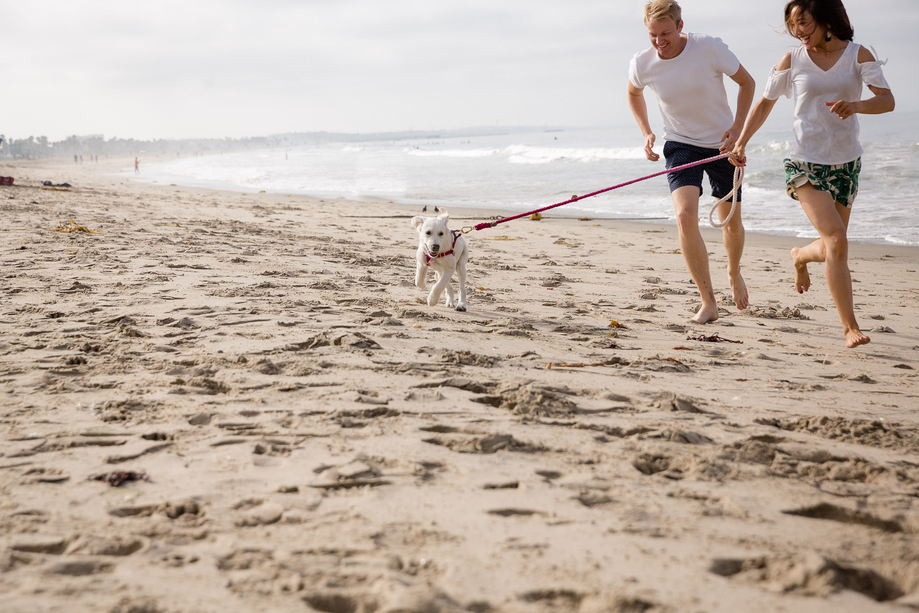 couple-running-in-the-beach-with-puppy-dog-lifestyle-shoot.jpg
