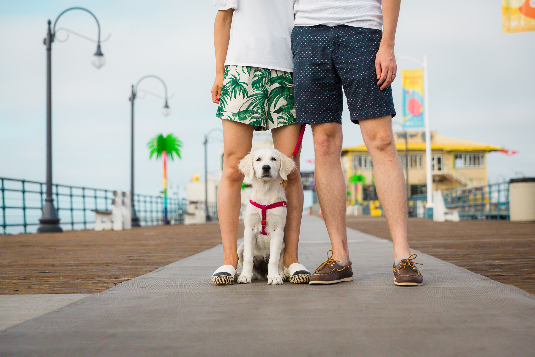 santa-monica-pier-photos-family-with-puppy-dog.jpg