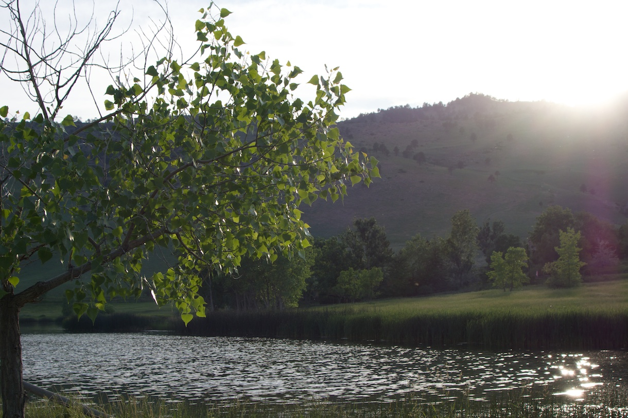 Wonderland Lake, Boulder, 13 June
