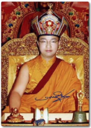 His Holiness Dudjom Sangye Pema Shepa