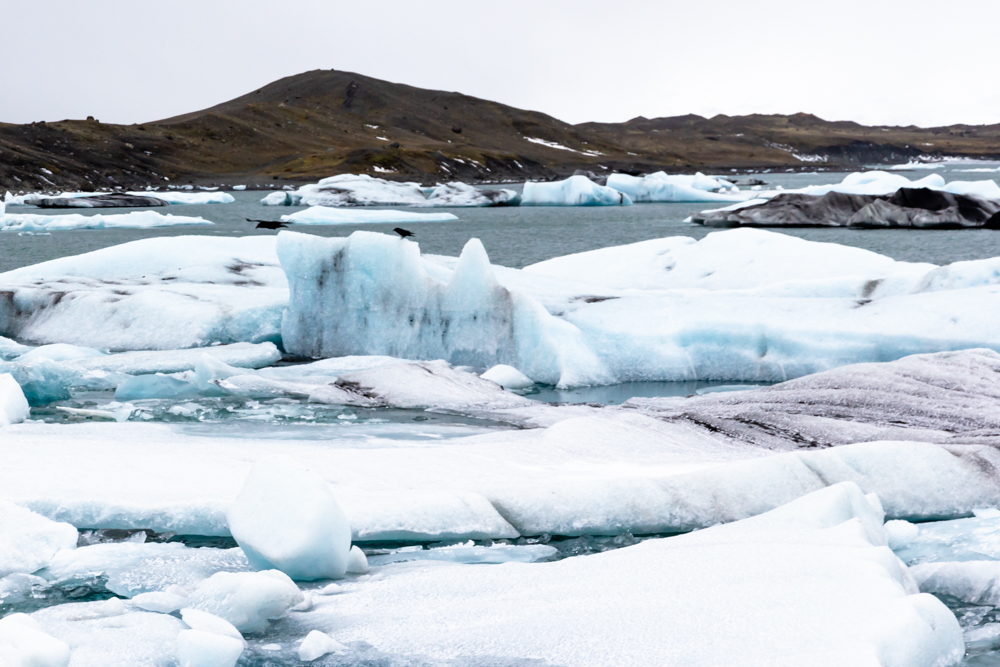 glacier lagoon-5.jpg