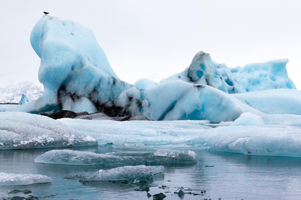 glacier lagoon-7.jpg
