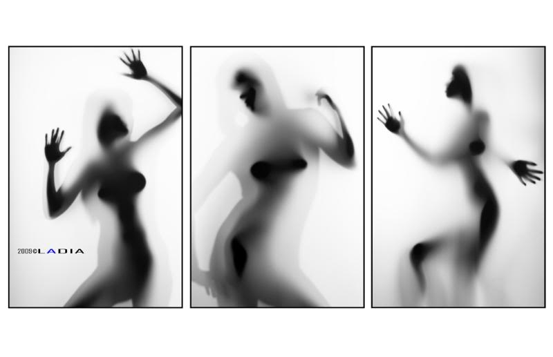 BodyscapesTryptich.jpg
