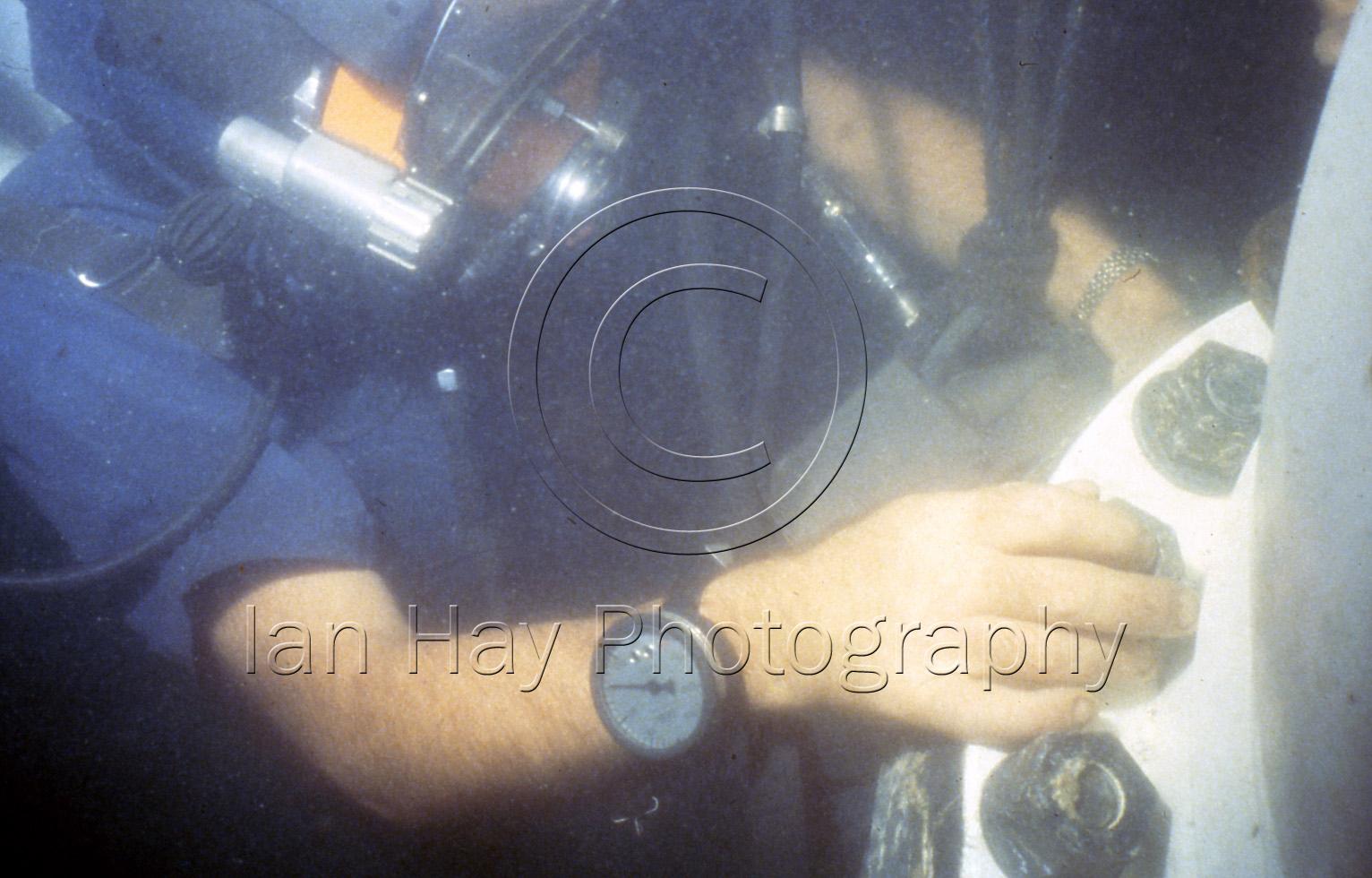 (Copyright Ian Hay)32 (21) copy.jpg