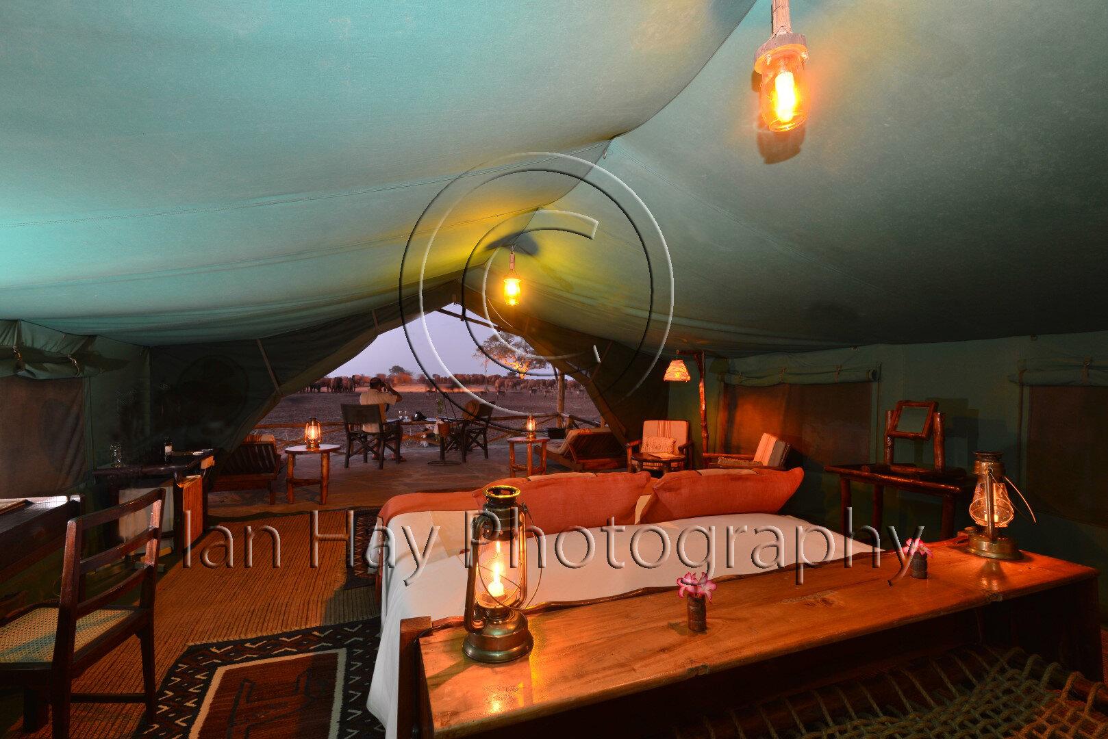 Suite tent (5) Edit (Large).jpg
