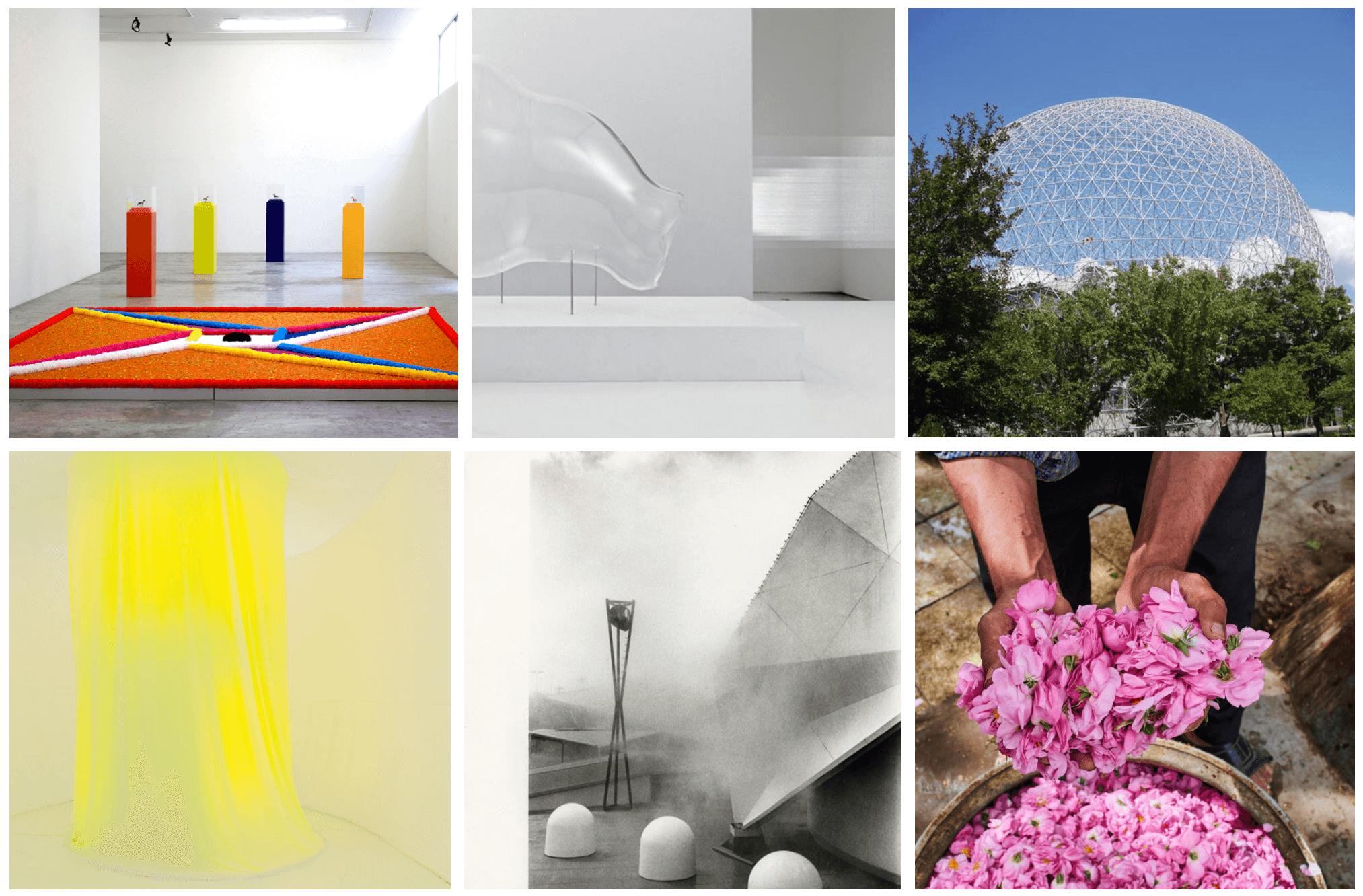 Visuels → La Biennale de Lyon