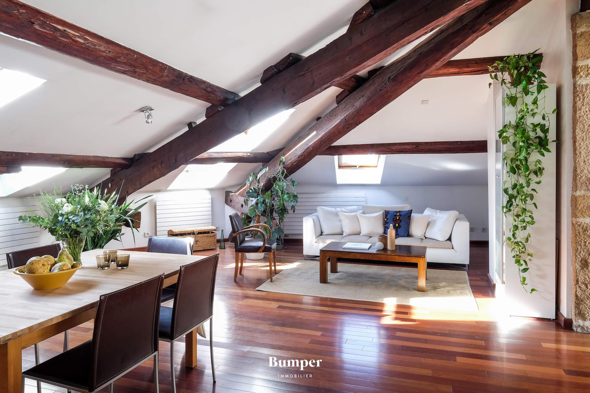 bumper-immobilier-appartement-vente-achat-investir-pret-courtier-lyon-rhone-terrasse-6900310.jpg