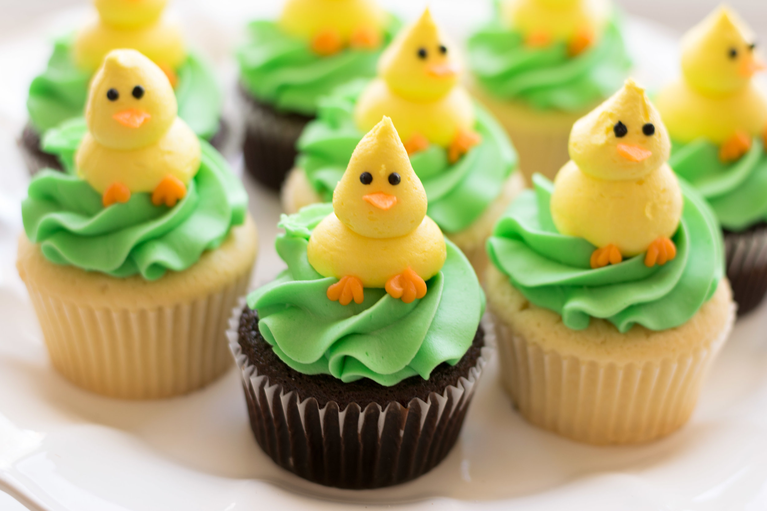 Chick Cupcakes : Chocolate or Vanilla bases - $4.50