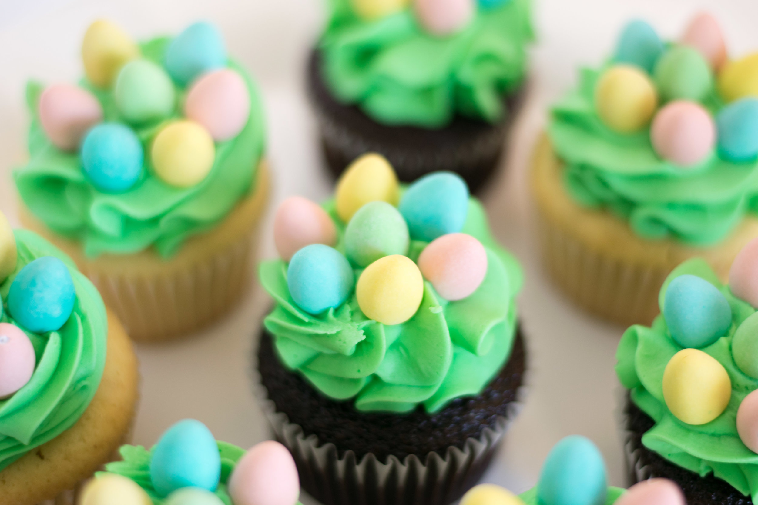Nest Cupcakes:  Chocolate or Vanilla bases - $4.50