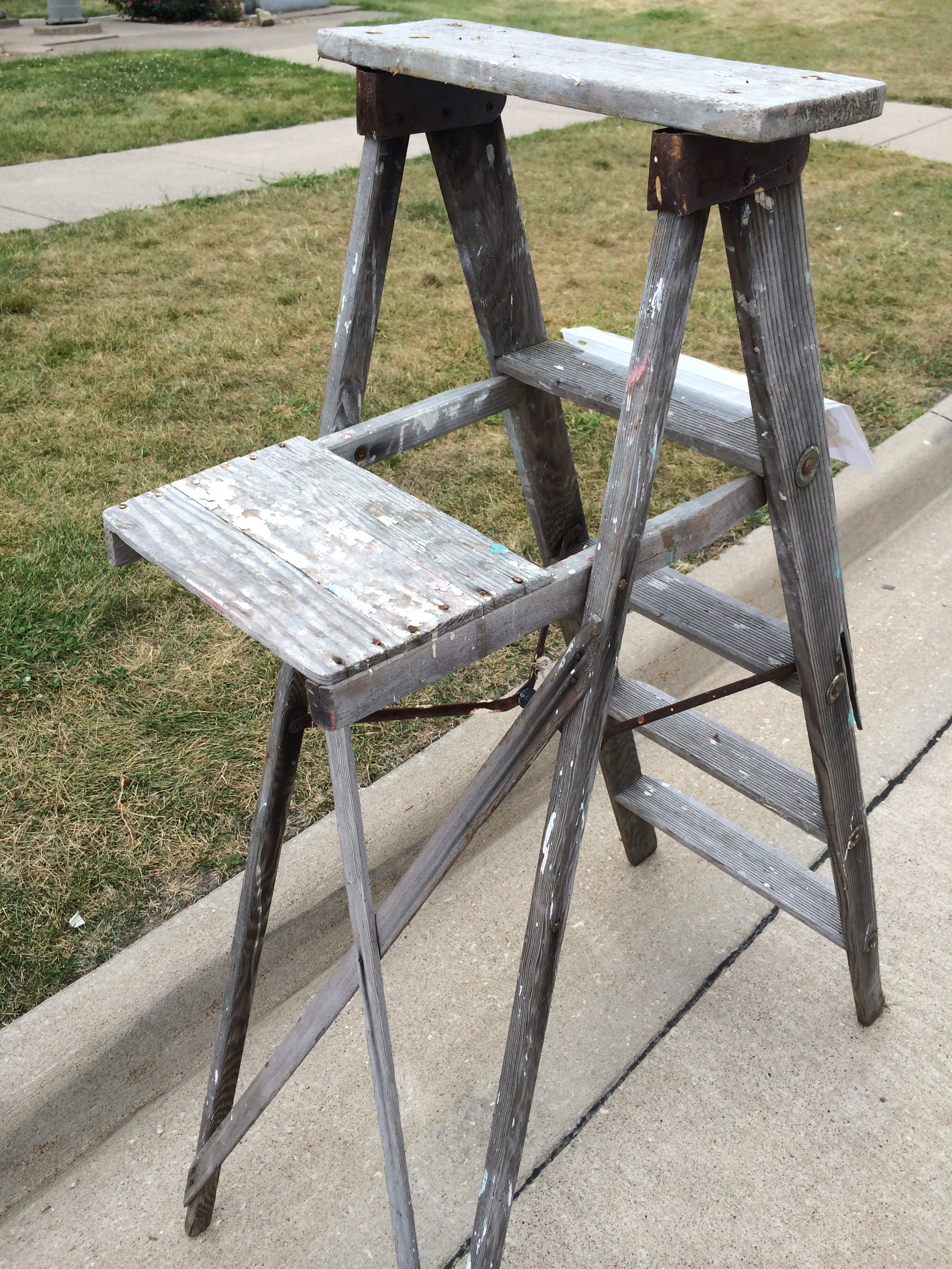 The worlds oldest ladder