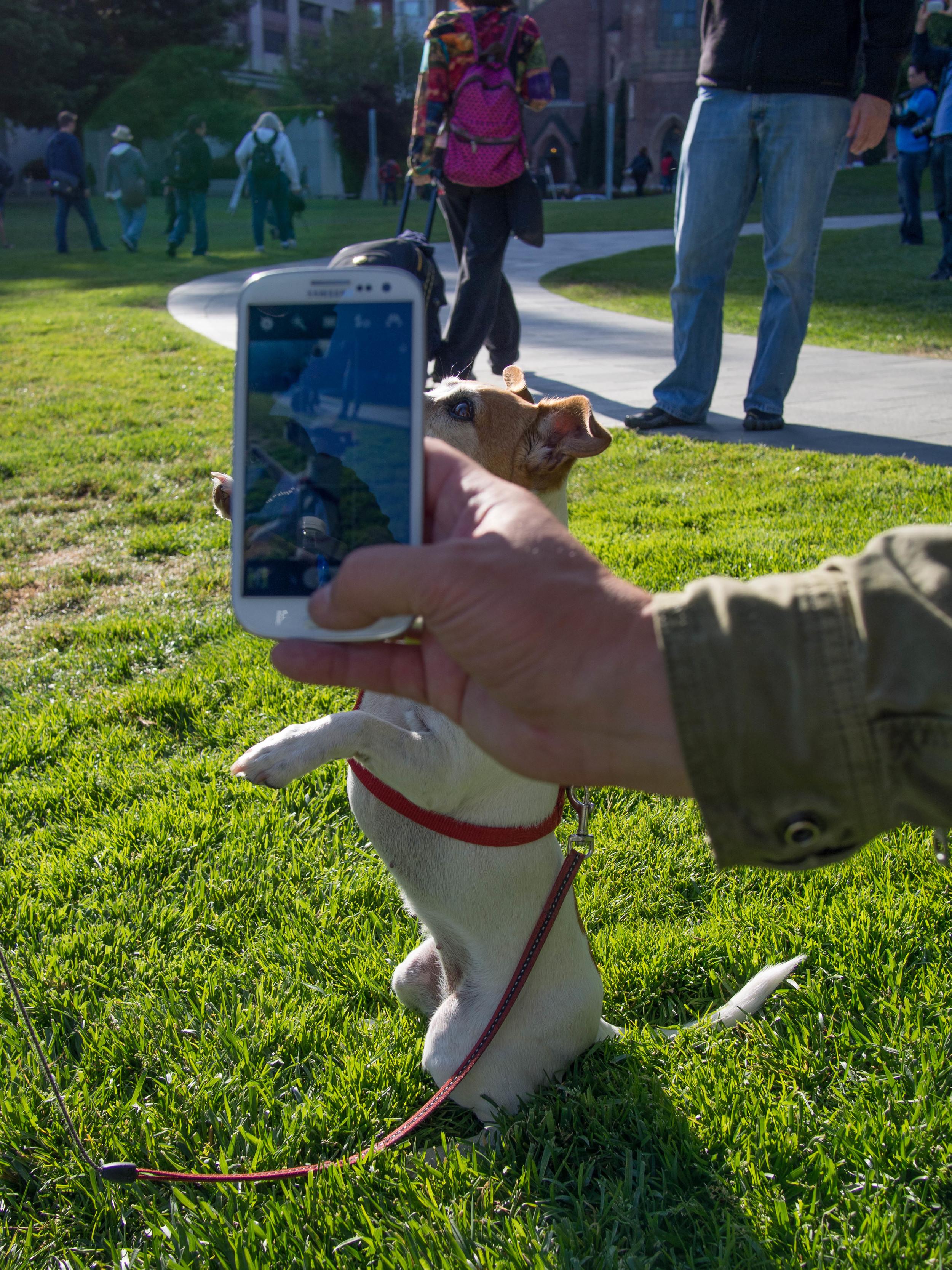 2013 05 14 SF Photowalk with Trey Ratcliff and Thomas Hawk-5 (5 of 12).jpg
