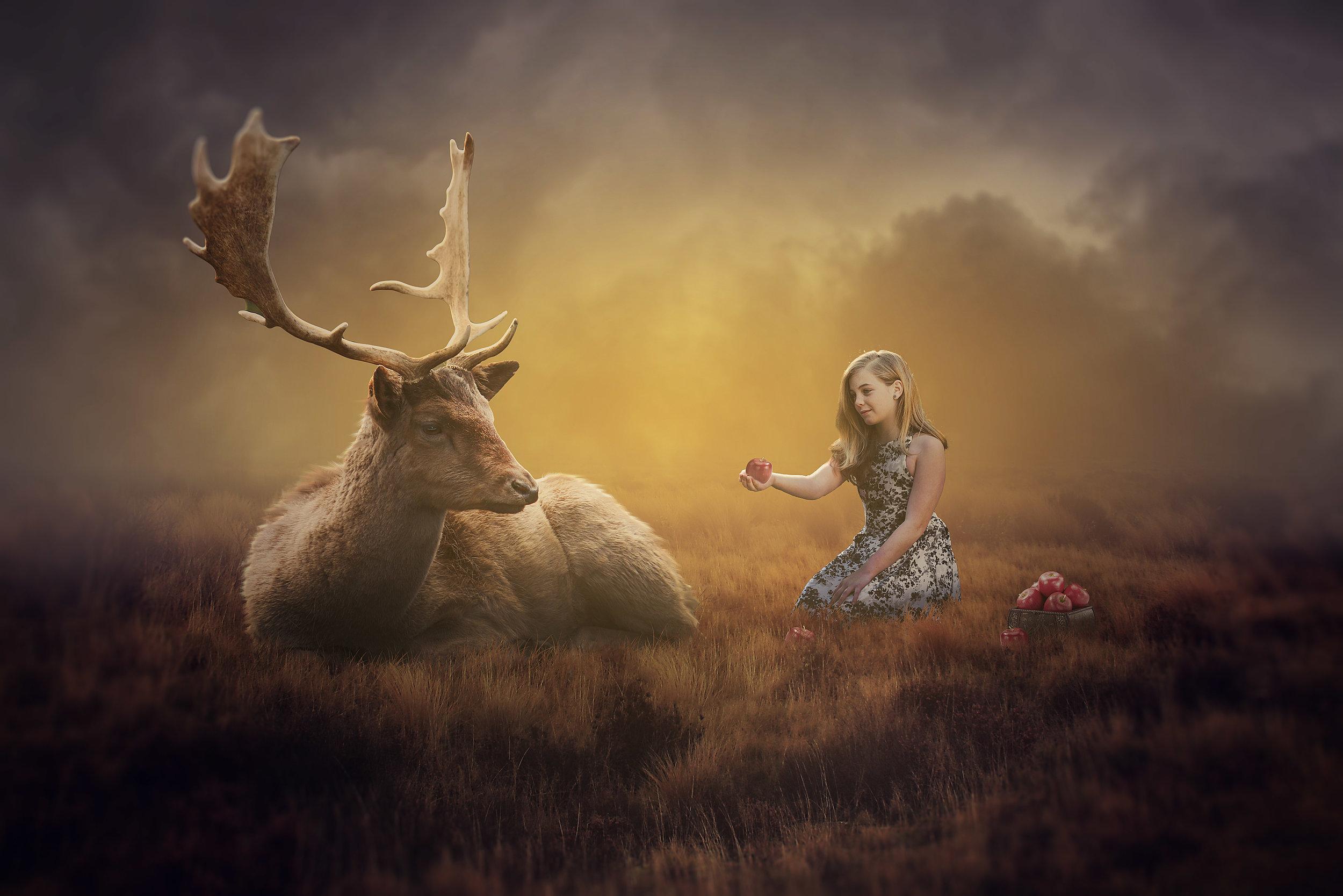 Deer Kiley.jpg
