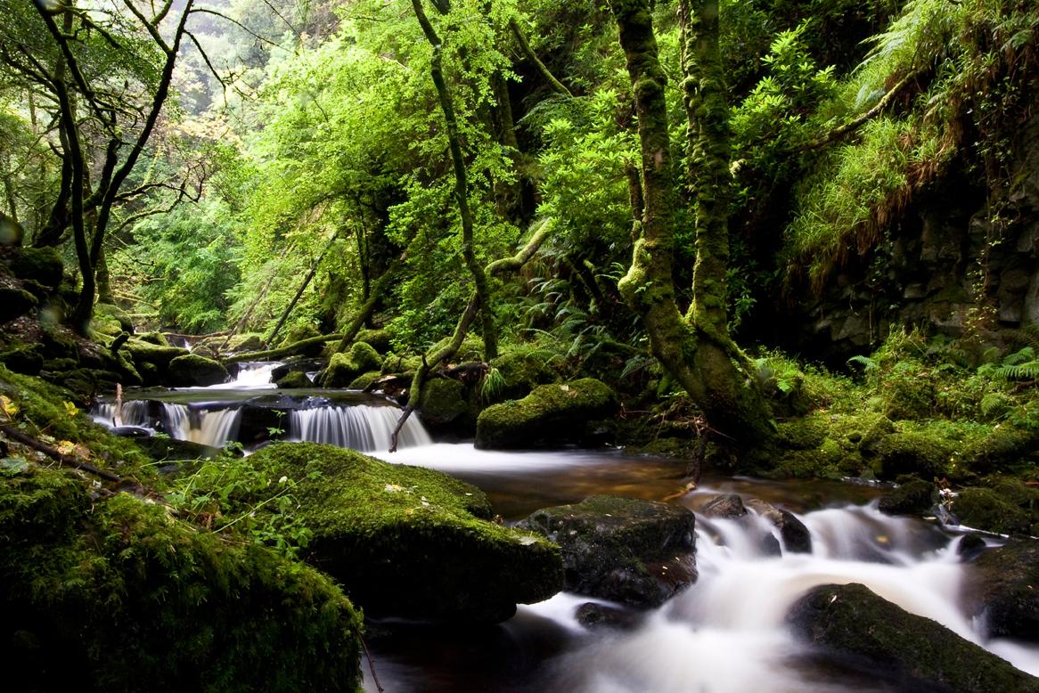 Falls-of-Killarney-National-Park.jpg