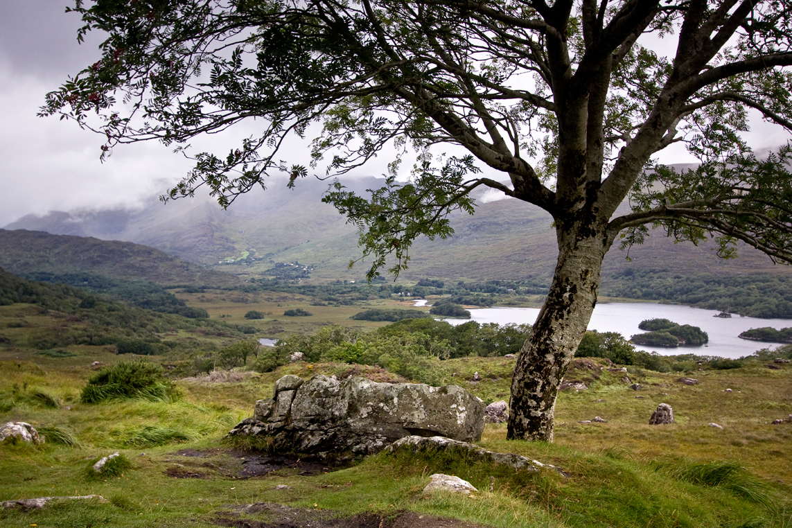 Killarney-national-park.jpg