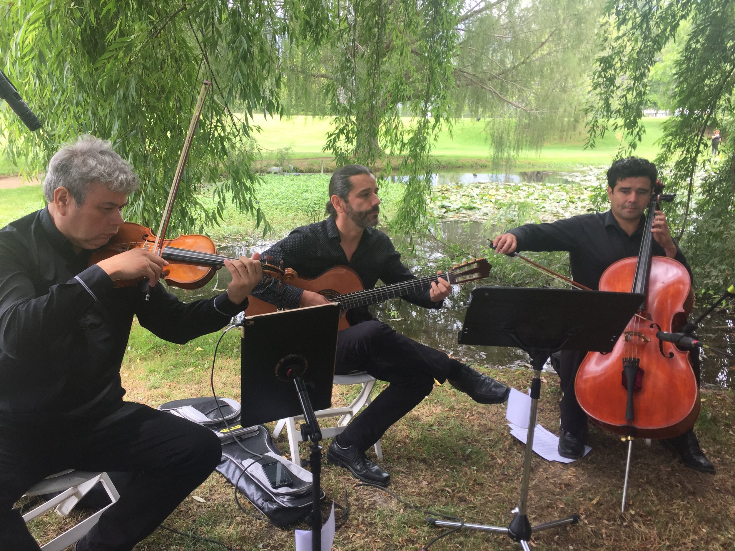 viña tarapaca matrimonio musica novios ceremonia musicos chile