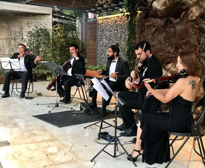 cuarteto de cuerdas electrico chile yamaha violin violinista cello