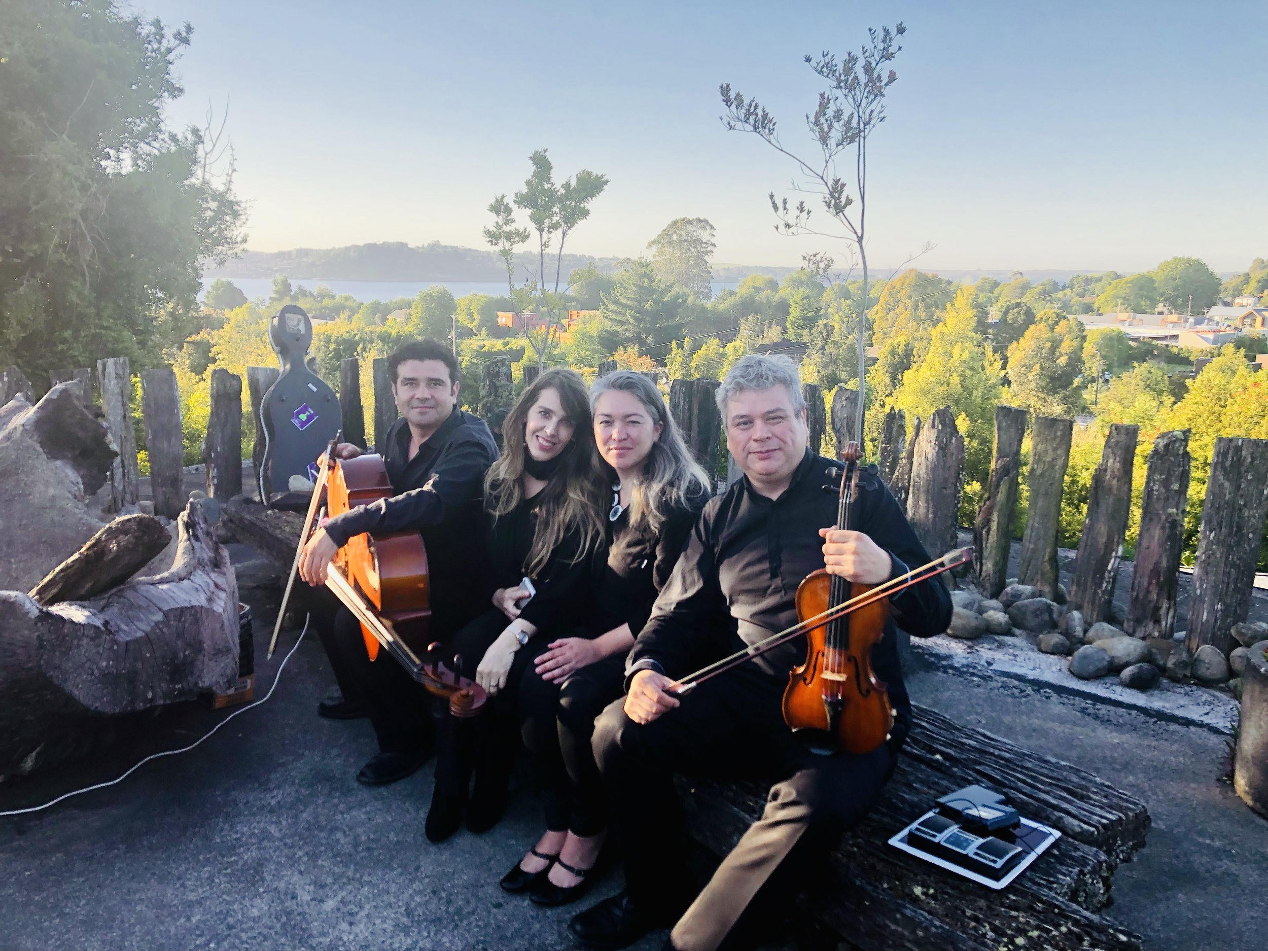 Musicos para matrimonios y eventos, Puerto Varas Chile