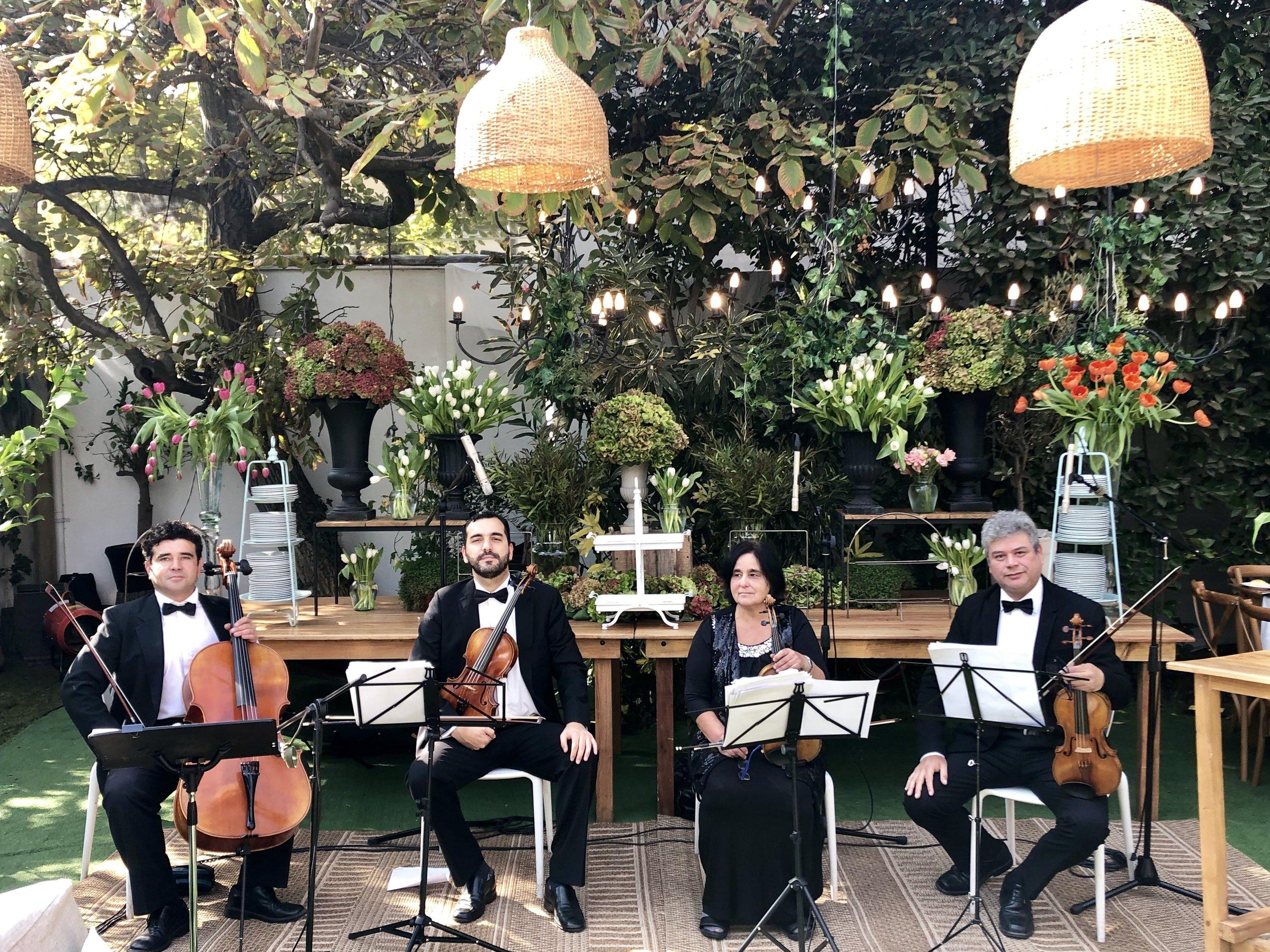 Cuarteto de cuerdas para eventos, Músicos Agez Chile