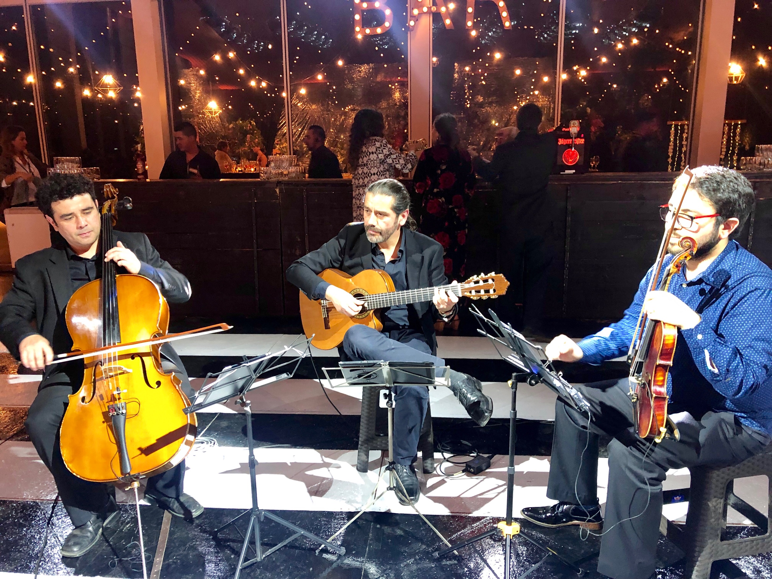 Musicos para eventos y matrimonios Agez Chile