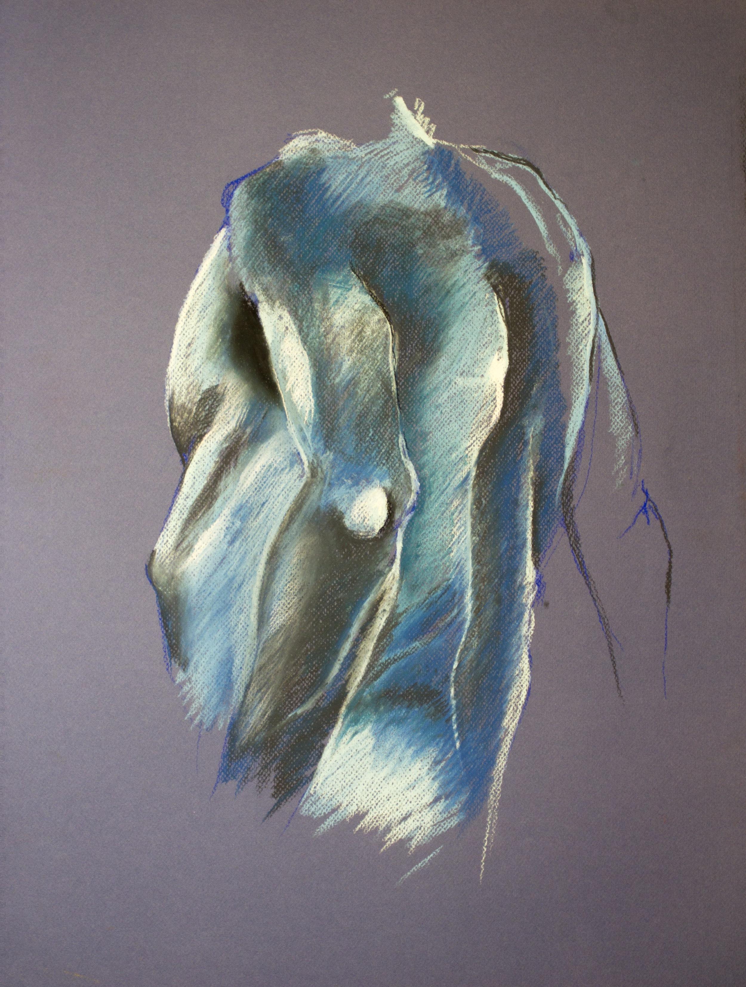 "Chalk pastel on mayfair 20"" x 26"" 2011"