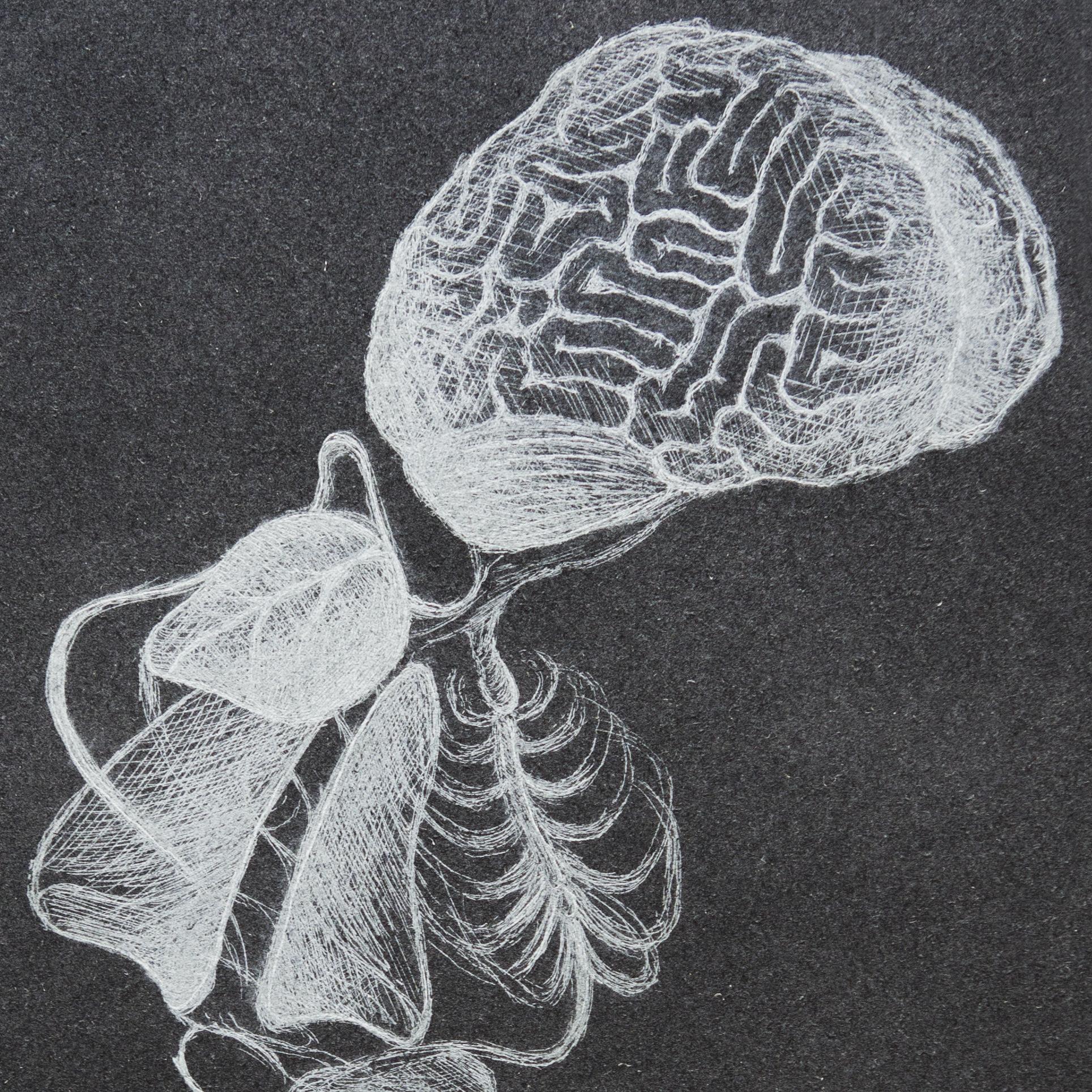 "7.5"" x 11"" Copper etching intaglio print, ed. 1/5 (detail) 2013"