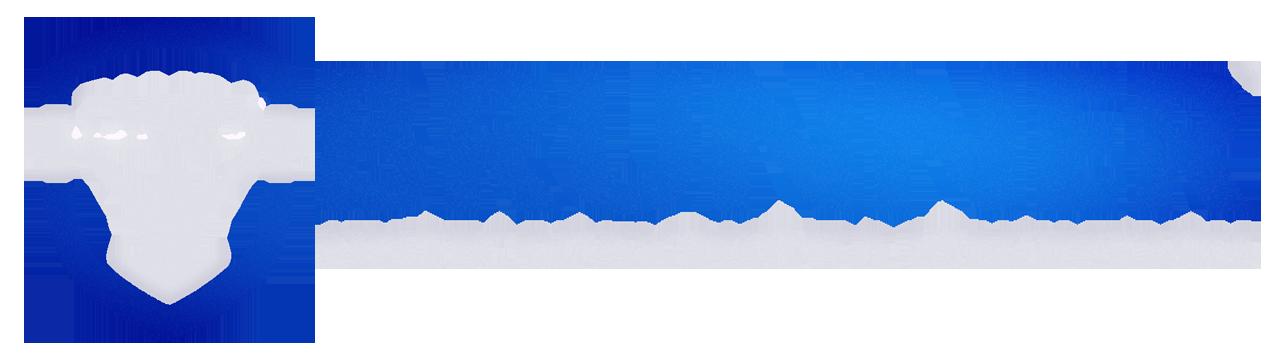 Color Logo Large.png