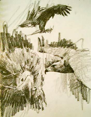 Eagle,Gabor Svagrik.jpg