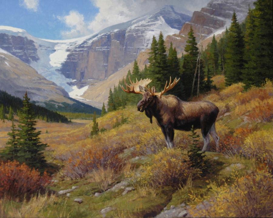 Glacier_Country_Bull_40x50.jpg