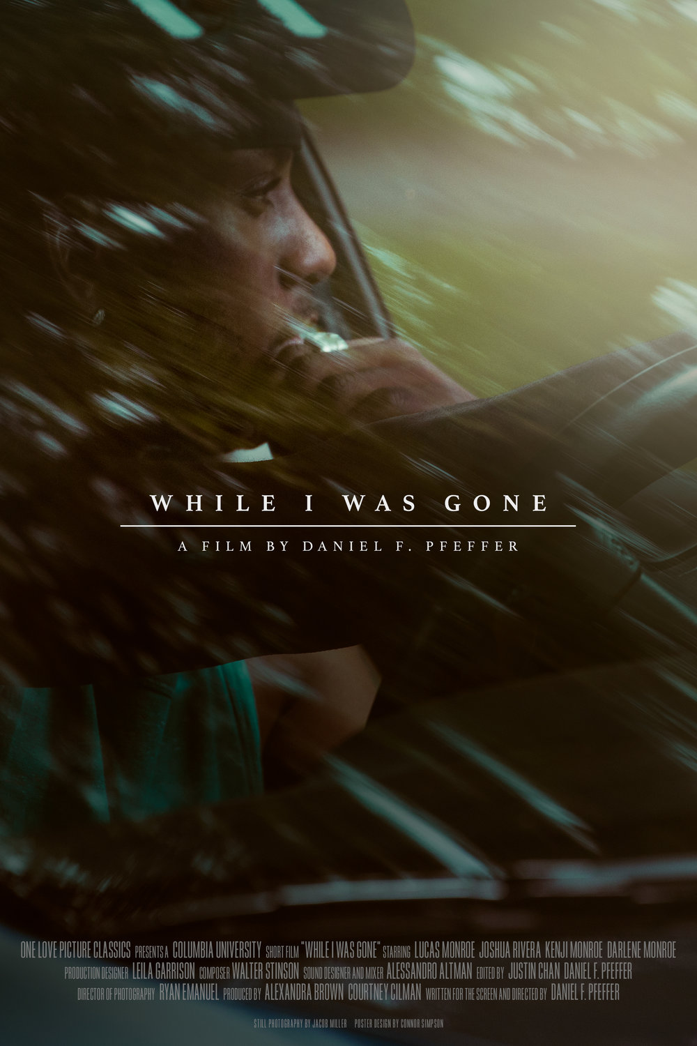 while_i_was_gone_poster_2.jpg