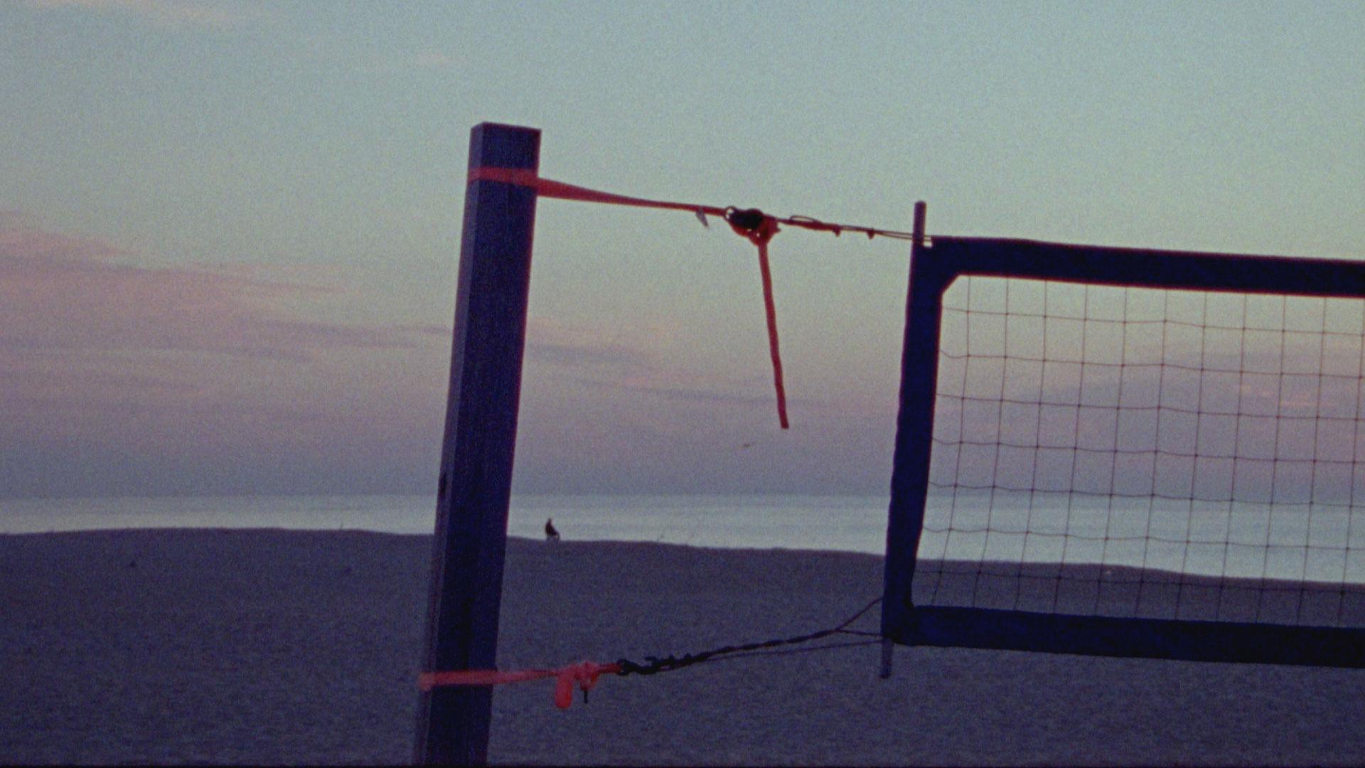 Sandy-Still-1.jpg