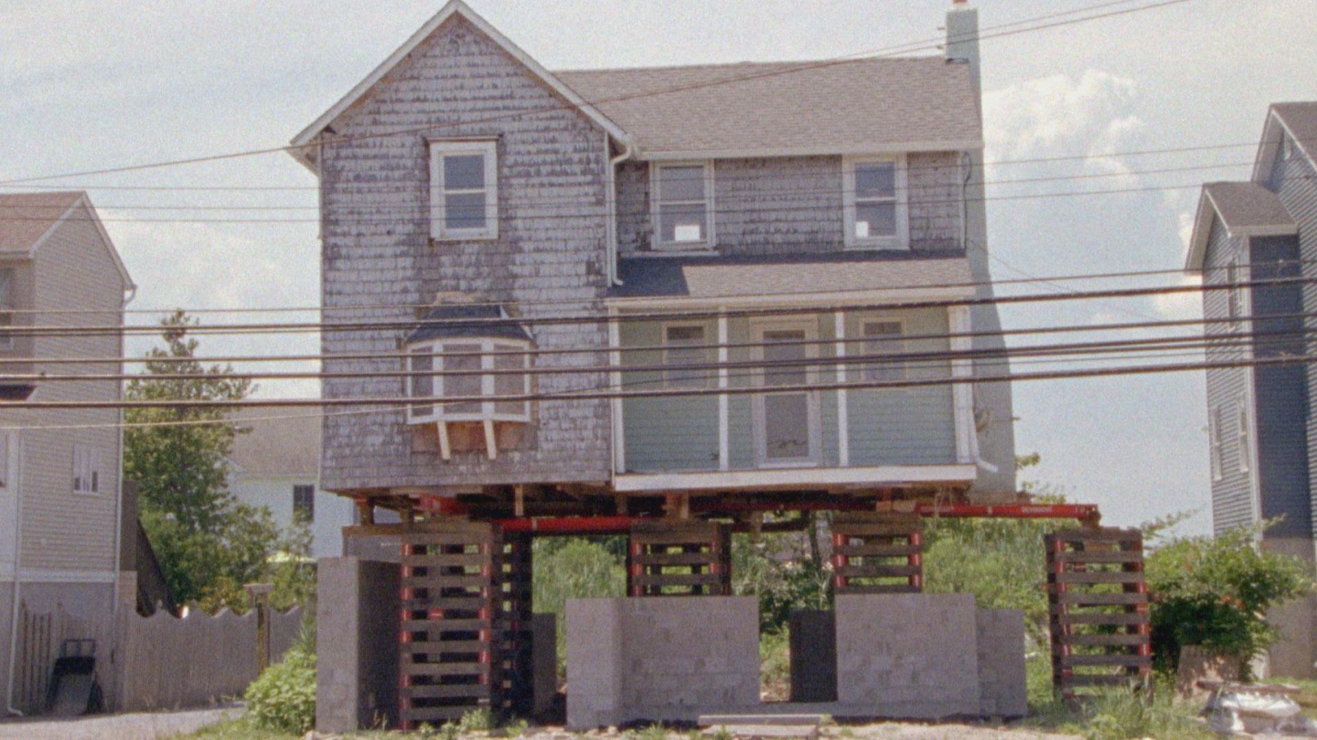 Sandy-Still-4.jpg