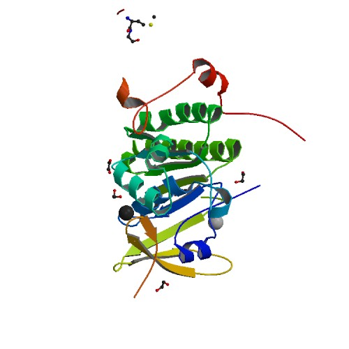 Protein Data Bank rendering of the BRCA-2 gene.