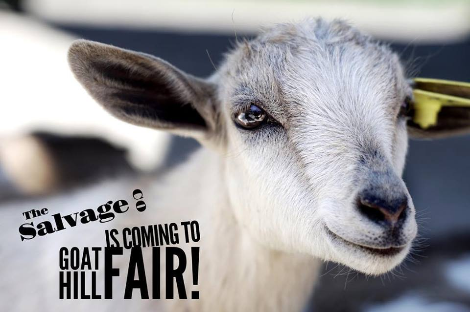 Goat Hill Fair with The Salvage Co.