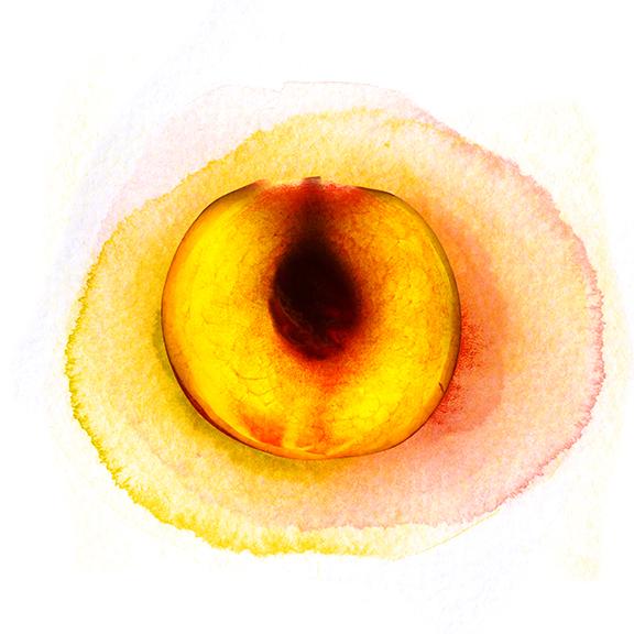 peach_large.jpg