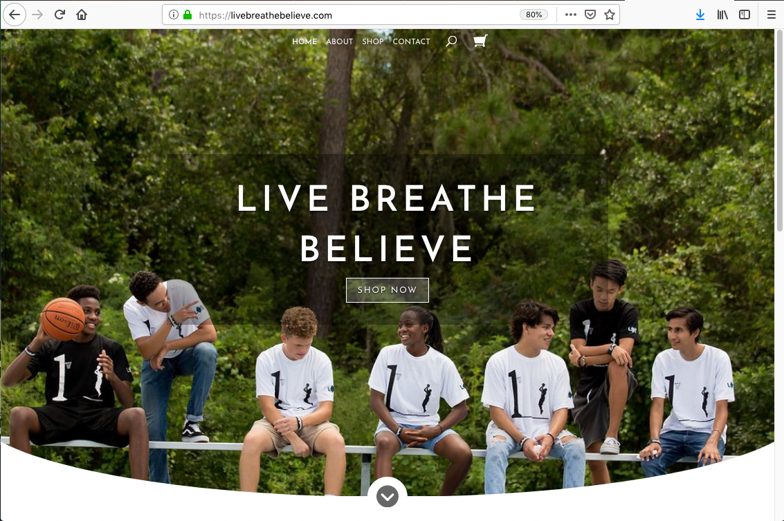 Website Homepage Imagery Example
