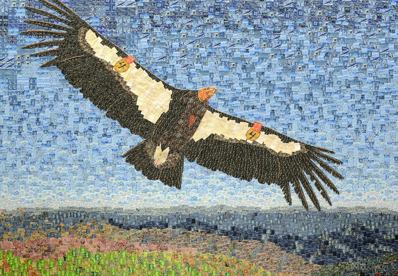 California Condor email.jpg
