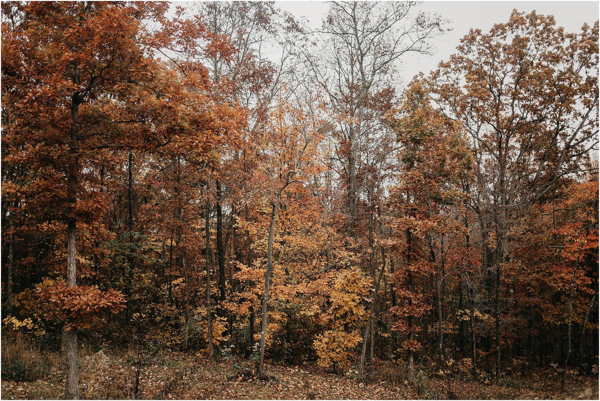 Chattanooga-Autumn-Engagement-01.jpg