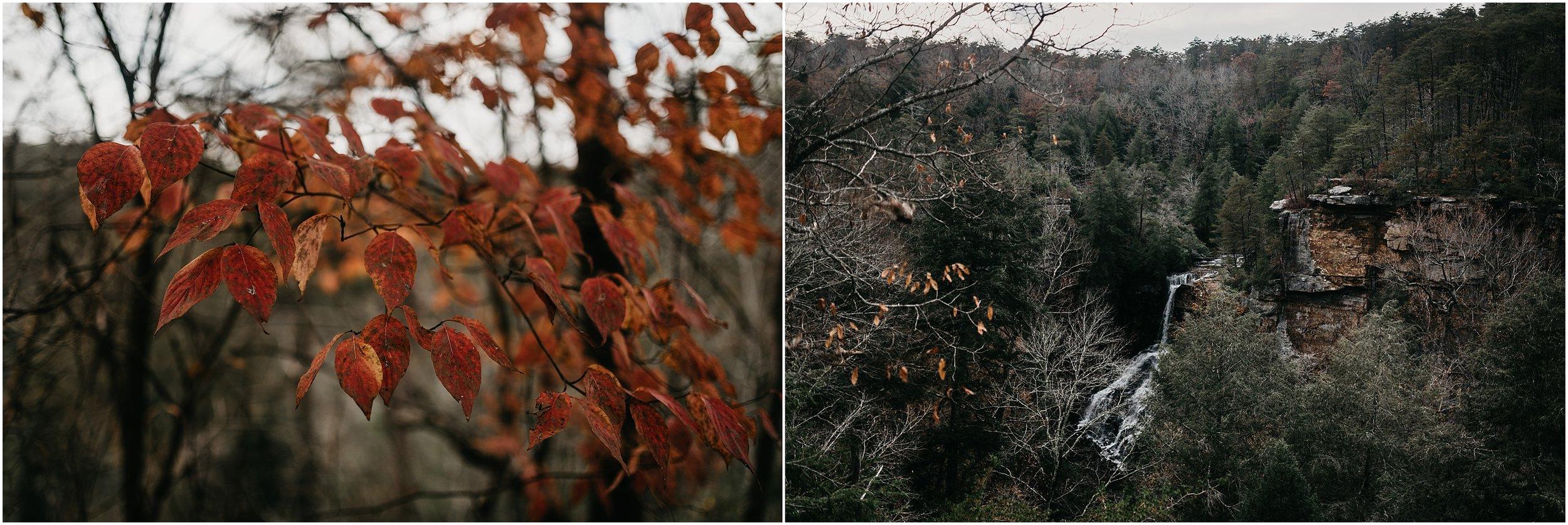 Chattanooga-Autumn-Engagement-20.jpg