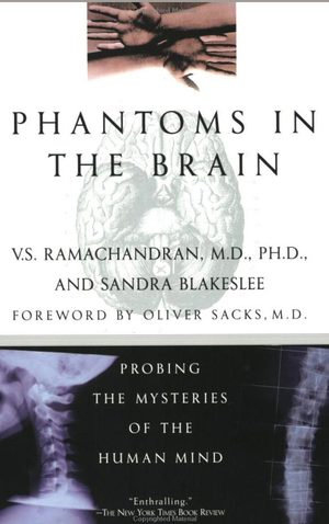phantoms-in-the-brain.jpg