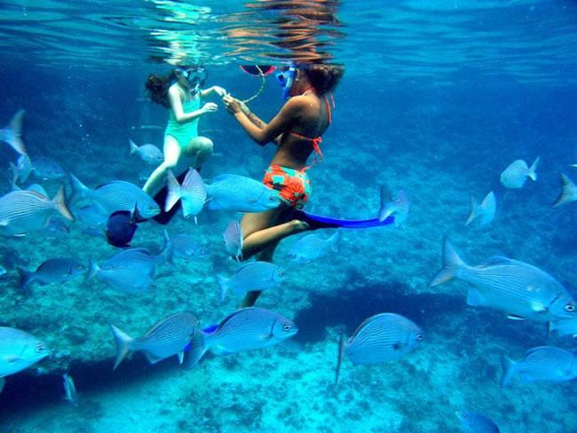 Caribe Azul
