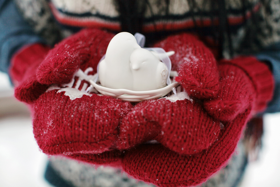 canadian-winter-wedding-shoot-122313-10.jpg