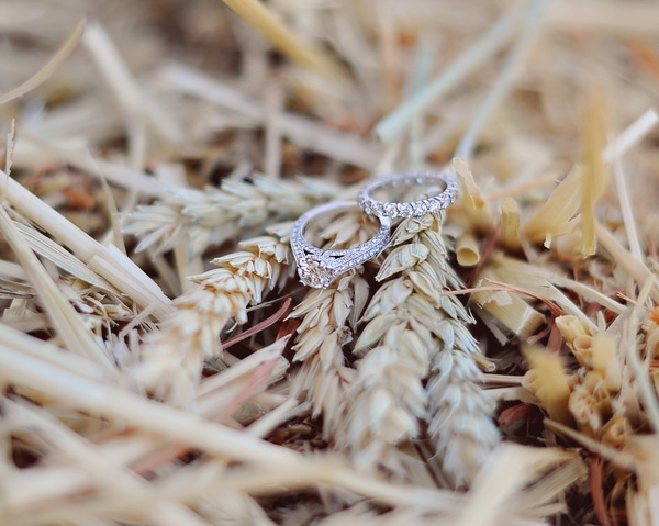 Wedding Rings in hay | from Arina B Photography #rusticweddings #ringshot #engagementring