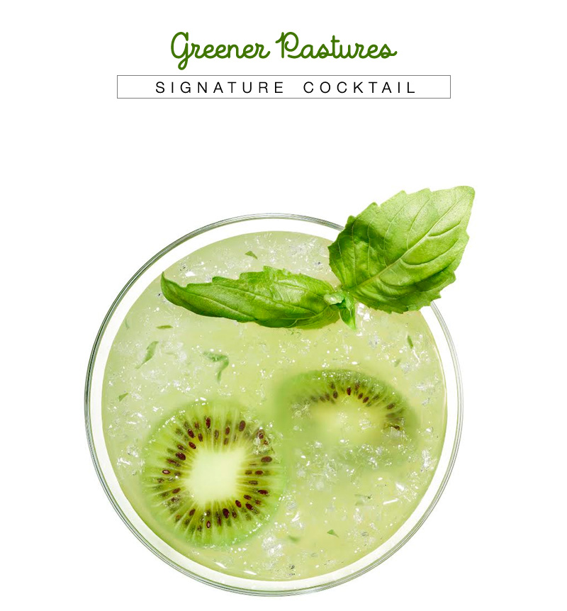 Greener Pastures Cocktail with Recipe from VDKA 6100 - alime, kiwi and basil concoction for every outdoor gathering