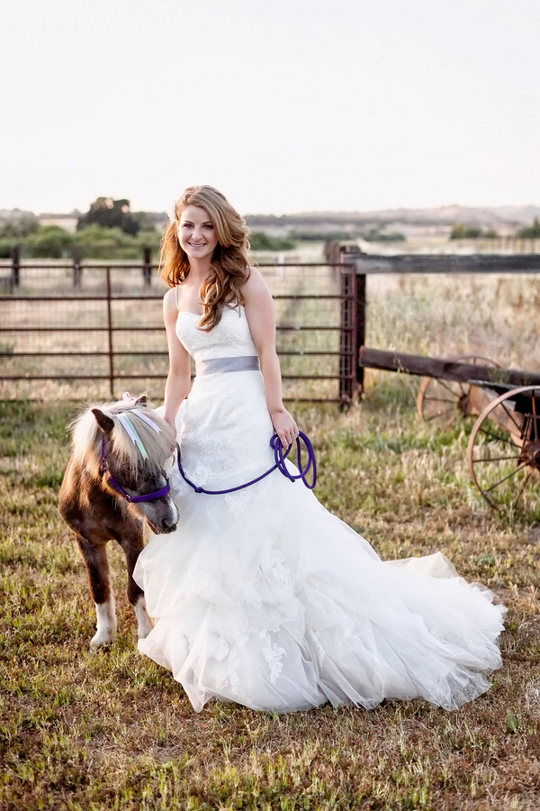 Bride and a Sweet Miniature Horse | Photo by William Innes Photography | via www.brendasweddingblog.com